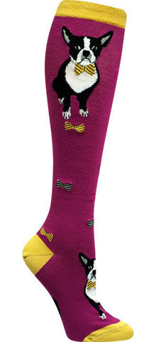 modsock_boston_terrier_dog_sockdrawer.com_knee_high_large
