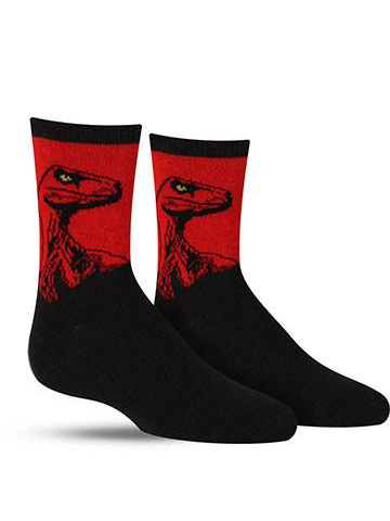 Kids' Raptor Socks