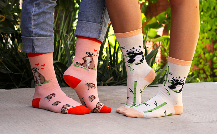 Welcome New Animals to The Sock Drawer Zoo!